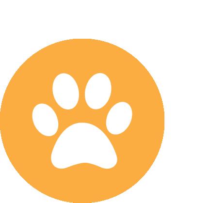 Dog friendly properties